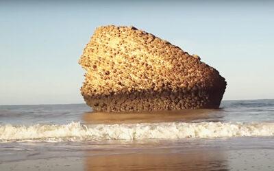 Playa de Matalascañas en Almonte (Huelva)