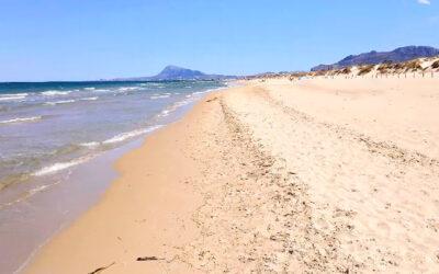 Playa de Aigua Morta en Oliva