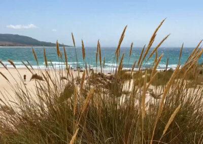 Playas aisladas en Andalucía - Playa de Bolonia en Tarifa